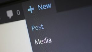 Wordpress SEO Post